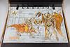 [Comentários]Saint Cloth Myth EX - Soul of Gold Mu de Áries 20880168149_355c267e3b_t