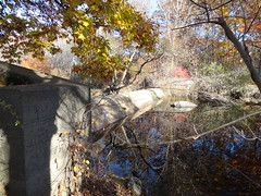The flow of the Pawcatuck River comes to a halt against the side wall of the White Rock dam in Westerly, R. I. and Stonington, Conn. In the coming months, the entire dam, the related structures and any submerged, wooden legacy dams will be removed from the Pawcatuck River. Credit: Lia McLaughlin/USFWS