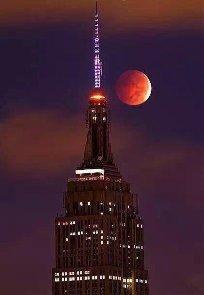 紐約血月4