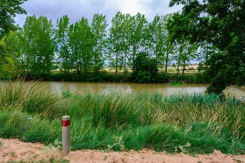 Guma. LIC Riberas del Duero y afluentes