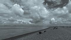 Baie de Somme 2014