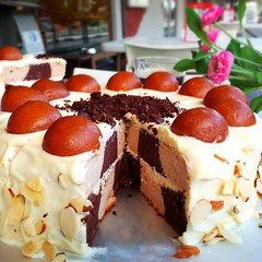 Gulab Jamun Checkerboard Cake