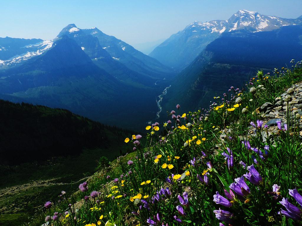 The Highline Trail, Glacier National Park, Montana, USA