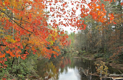 autumn color reflection river landscape maple explore redorange 2015 brp oct25 linvilleriver