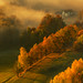 Autumn by Bonnie And Clyde Creative Images