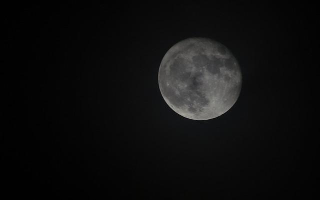 November 15th Super Moon, Nikon D5100, Sigma APO 170-500mm F5-6.3 Aspherical RF