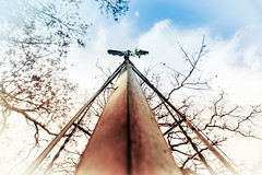 Rusty Windmill (4211)