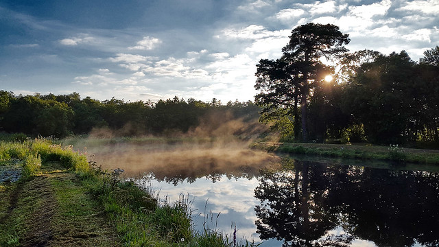 Fog on Boyle Canal 13/8/2015