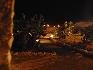 Parco dei Fichi d'India-1