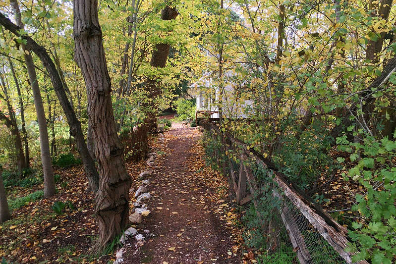 Heysen path