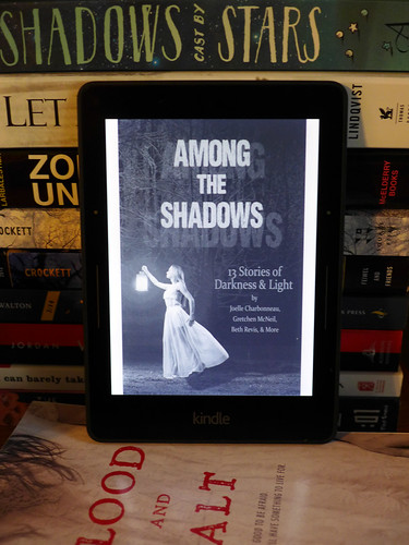 2015-08-28 - Among the Shadows - 0001 [flickr]