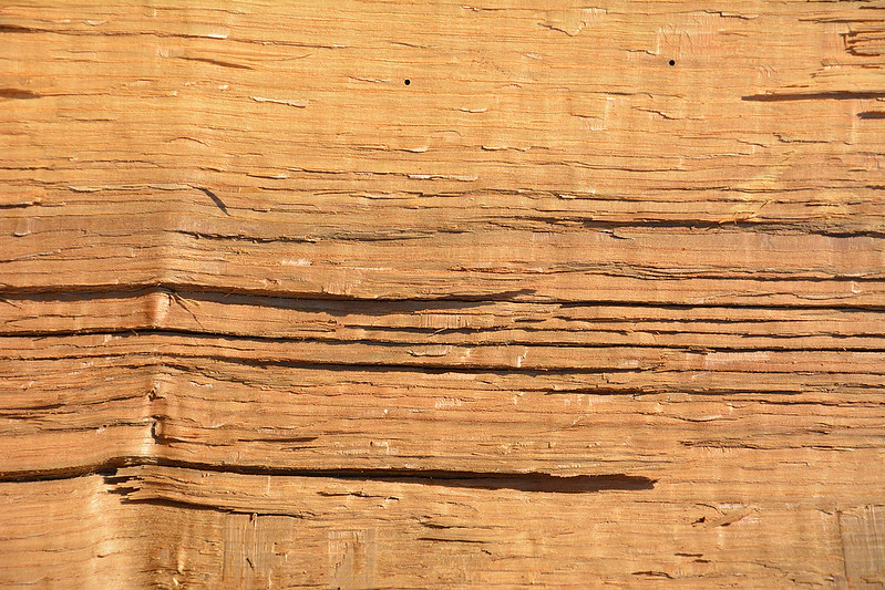 Wood Texture #8