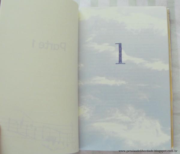 Resenha, livro, O céu está em todo lugar, Jandy Nelson, Novo Conceito