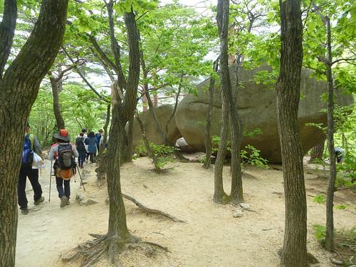 Co-Sokcho-Seoraksan-Sentier pédestre (18)