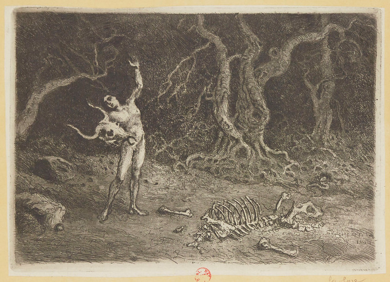 Eugene Viala - Human symbols, board 7 The Lyre, 1906-07