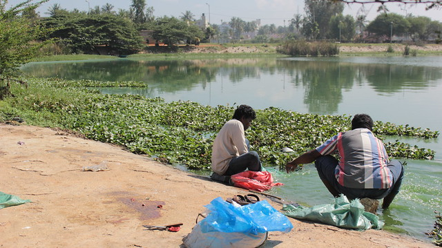 Bags, knives, slippers, feet and hands are all immersed in the lake waters.