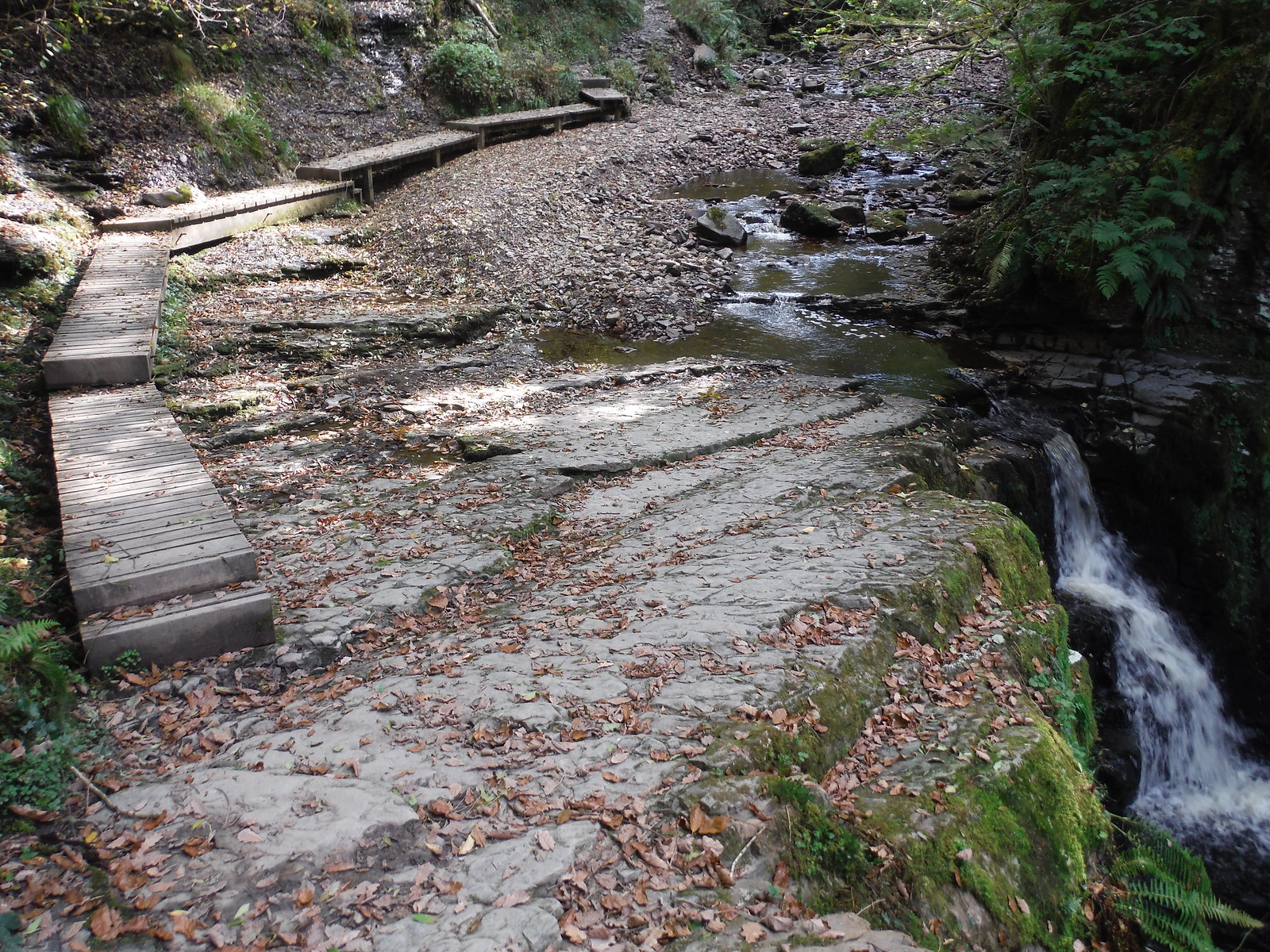 Boardwalk to side of another waterfall on the Nant Llech SWC Walk 280 Henrhyd Falls - Sgwd Henrhyd (Craig y Nos Circular)