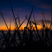 Obscured Sunset by Laith Stevens Photography