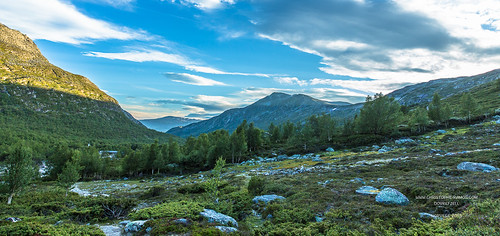 panorama canon été dovrefjell norvège 2015 scandinavie vacances2015 parcnatureldudovrefjell