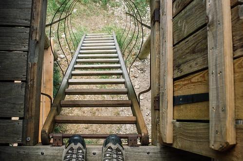 Observer les animaux - Forêt d'Auberive - L'escalier qui mène au cockpit