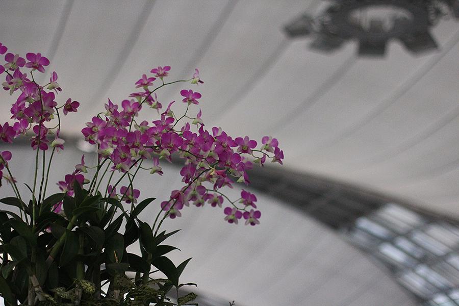 Suvarnabhumi-Airport_09