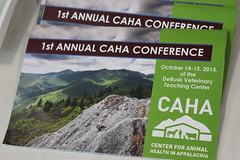 2015 CAHA Conference at LMU-CVM