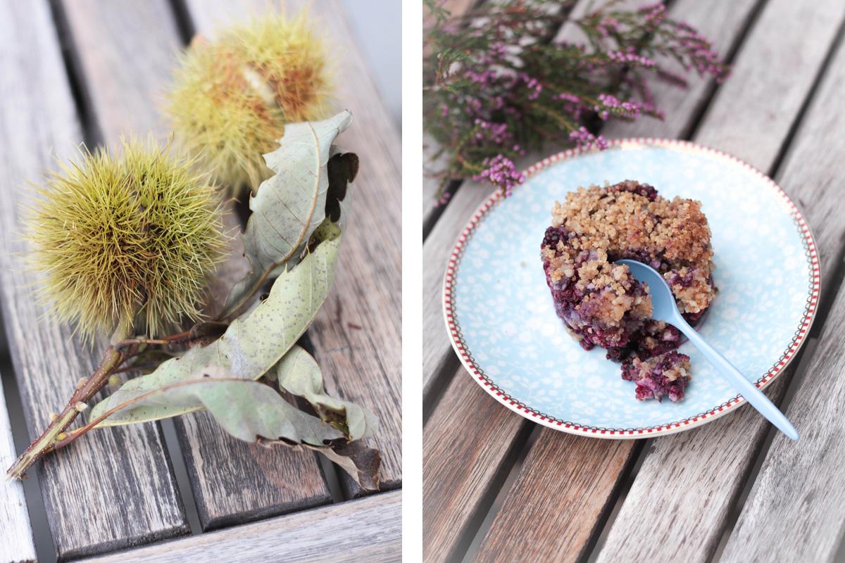 recette-crumble-quinoa-fruitsrouges