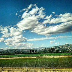 Out for a drive and passing by some beautiful scenery!  #Photolife #sondralynnphotography #sky #clouds #trees #farm #farmland #driving #southern #southern #california #socal  #headingout #windowviews #views #😁