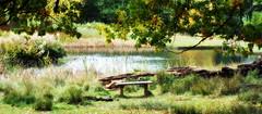 Dunham Park