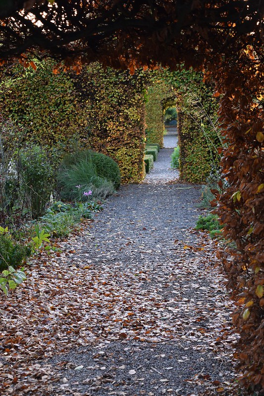 Walled Gardens at Ballymaloe Cookery School turning brown in the fall.