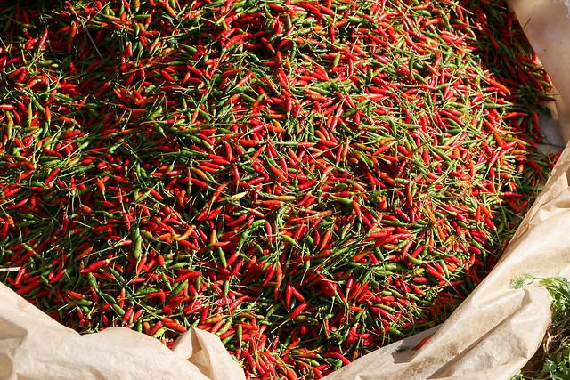Chili peppers in Luang Prabang, laos ルアンパバーン、青空市場の唐辛子屋