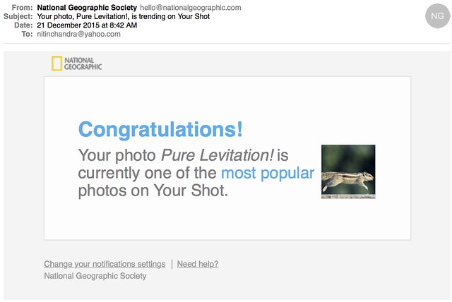 Your photo Pure Levitation is trending on Your Shot