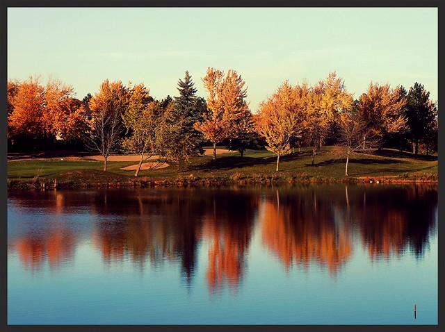 Reflections, Nikon COOLPIX S6200