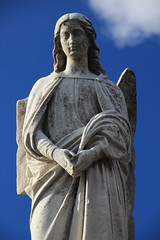 Angel With A Broken Wing-IMG_4061ps