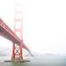 Golden Gate Bridge, San Francisco. by Matt Benton