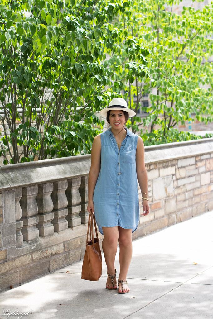 chambray dress, panama hat, leather tote-2.jpg