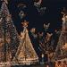 4 Magic Kingdom parade395 trees5