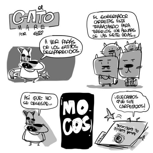 Carpetazo
