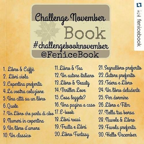 Challenge Book November