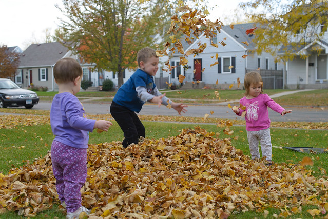 leaf play Oct 19th-16