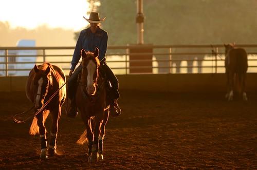 sunrise dawn goldenhour daybreak goldenlight perryga georgiahighschoolrodeoassociation georgianationalfairgroundsandagricenter southeasternshowdown