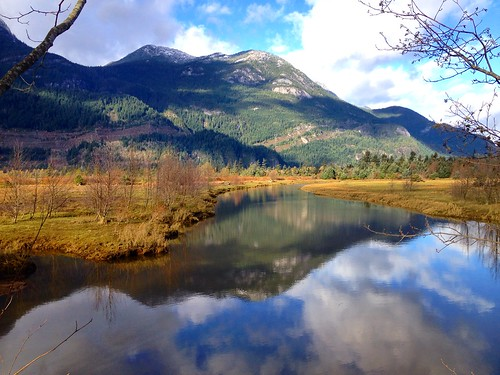 Squamish Estuary