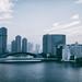 Vast Tokyo