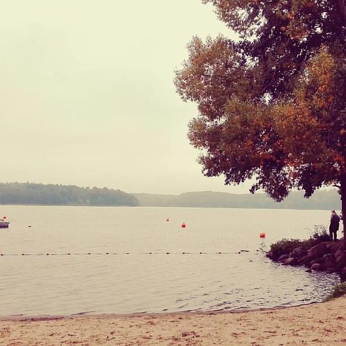#ratzeburg #see #water #germany #nieselregen #saturday #samstag #spaziergang #hungover #cold #herbst #fall #autumn #niceperson #solitude #nature #natur #frischeluft #freshair #outdoors #instabeach #beach