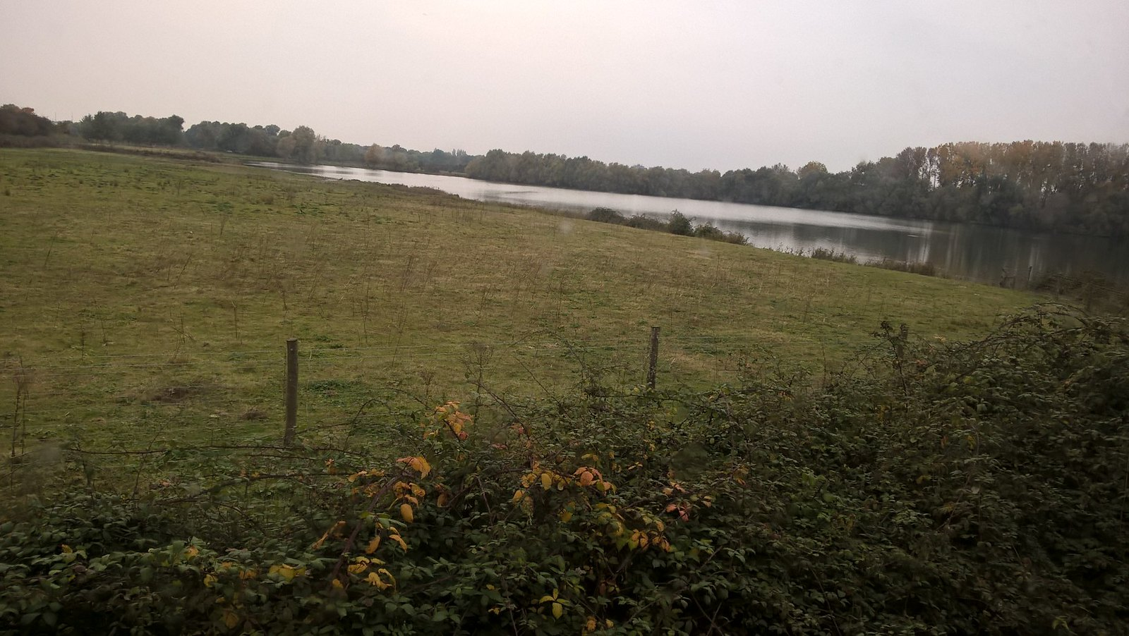 View from the Hide Near Godmanchester Nature Reserve