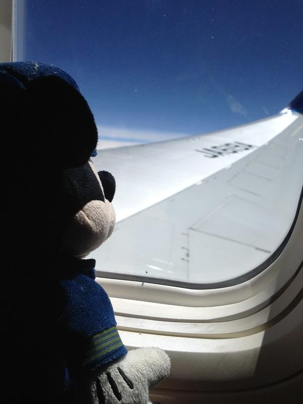 米奇仰望機翼