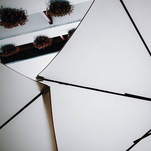 A change of view. #Canopy #umbrella...