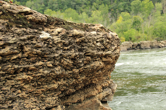 20150829_New_River_Gorge_040