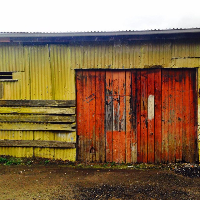 Spotting old sheds during laneway adventures