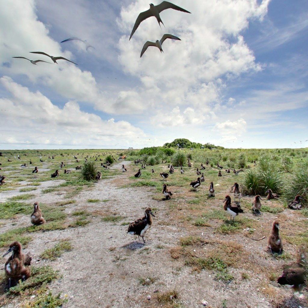 KD's World Tour - Midway Island